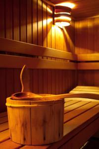 infrakrasnaya-sauna_0